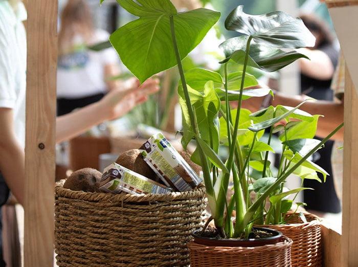 stoisko targowe firmy Alpro - detal na rośliny